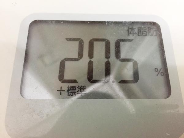 タダザップダイエット開始前(前日)の体脂肪=20