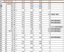 タダザップ・ダイエット25日間の記録、体重等の変化一覧表